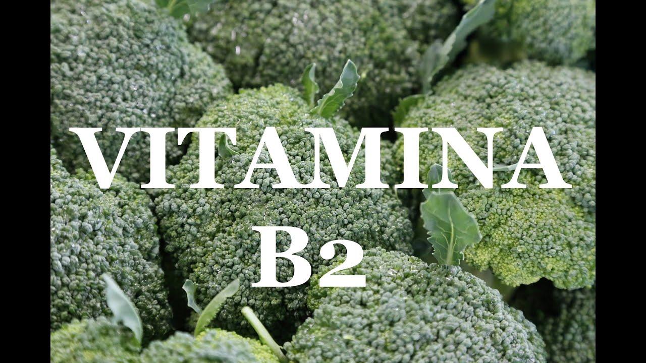 10 alimentos con vitamina b2