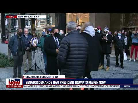 Off The Rails: Protester Shuts Down Chuck Schumer As He Demands President Trump Resign