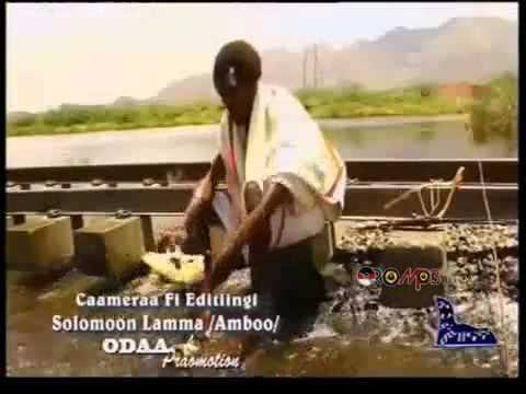 Download Halko Qasarunu - Karrayyicha [New Oromo Music 2013]