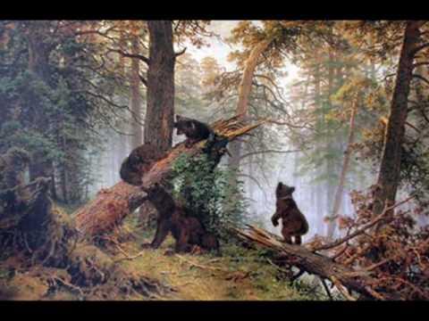 Luca S Мишки в сосновом лесу   СП В мире животных