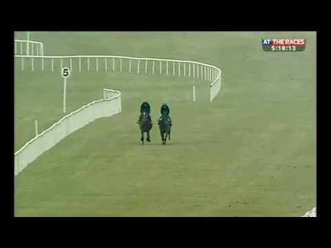 Ballydoyle workers (part one)