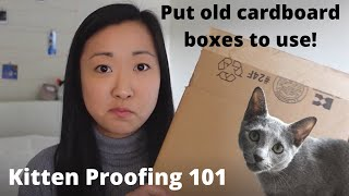 How to KittenProof your Apartment