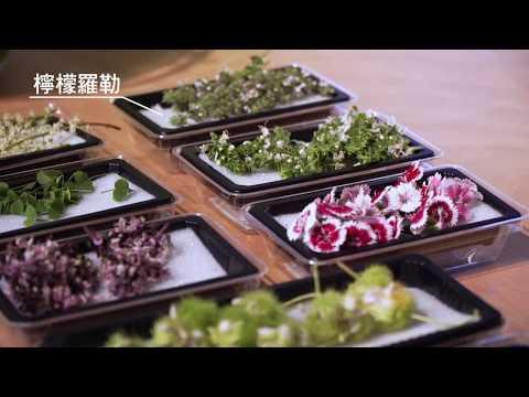 原來這些花可以吃!10種食用花Edible flowers X 料理─型男主廚 潘瑋翔Fly