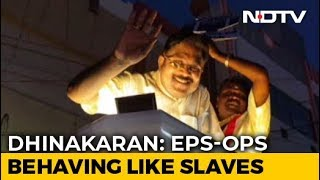 """""""People Will Vote For Amma's Real Party"""": TTV Dhinakaran To Prannoy Roy"""
