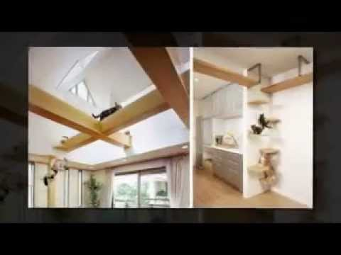Cat House Design Ideas - YouTube on cat home rules, cat education, cat home decor, cat house for cats, cat style, cat nutrition, cat home designs, homemade toy ideas, cat technology, cat health, cat insurance, cat white, cat green, cat on top of house, cat movies, cat beauty, cat bath, cat home quotes, cat love, cat diy,