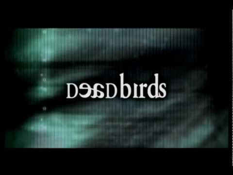 Dead Birds is listed (or ranked) 19 on the list The Best Michael Shannon Movies