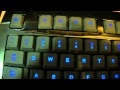 watch he video of Razer Lycosa Review