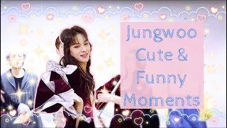 Video Jungwoo Cute & Funny Moments download MP3, 3GP, MP4, WEBM, AVI, FLV Oktober 2019