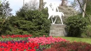 Dutch Tulip Garden Keukenhof At It