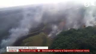 На Дніпропетровщині горять ліси