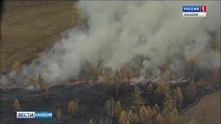 Лесной пожар тушили в Боградском районе. 10.04.2019