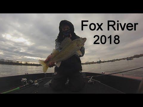Fox River Walleye Run 2018