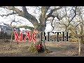 The World Famous Tree Of Macbeth mp3