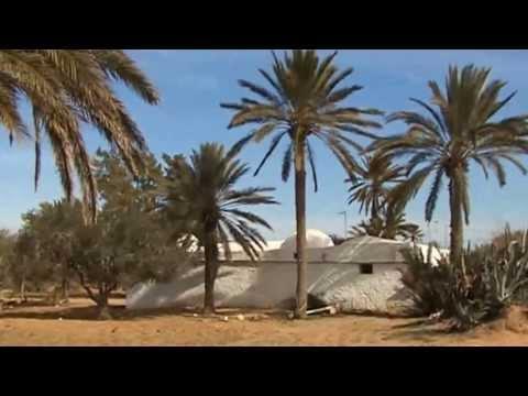 Tunisie du Sud découverte des paysages et traditions de Djerba