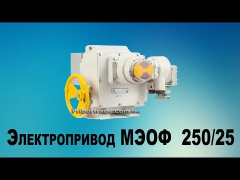 Электропривод МЭМ-250