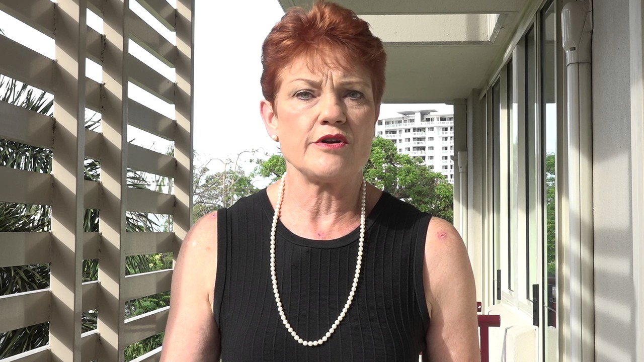 Pauline Hanson comments on Yassmin Abdel-Magied and Anzac Day