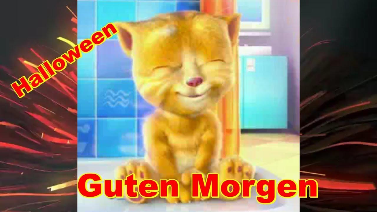 Guten Morgen Schönen Tag Gespenster Durch Strassen Ziehn Heute Nacht Ist Halloween Talking Ginger