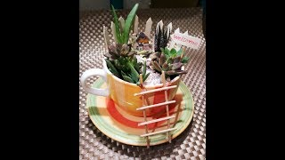 howtomadeteacupgarden welcome to my channelfairy garden dollar tree...