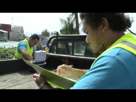 CODEX IN THE COOK ISLANDS (SHORT)