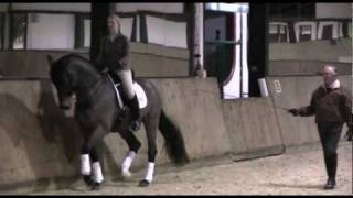 Laura Bechtolsheimer dressage training DVDs (TRAILER)
