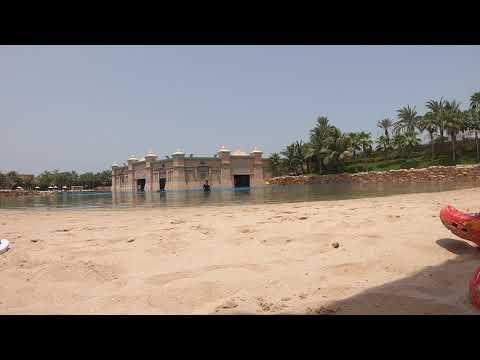 Atlantis The Palm – Dolphins Bay Show