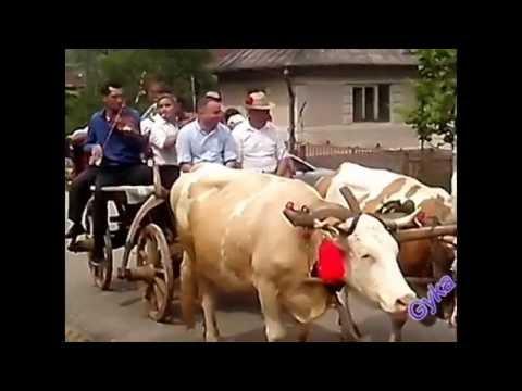 Rusalii 2016 Batin - Inpanatul Boului