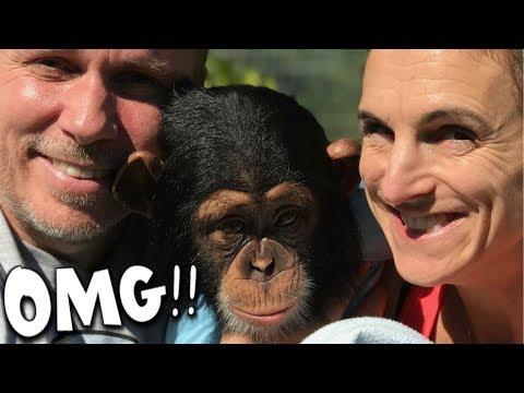 OMG!! WE GOT A CHIMPANZEE!!! | BRIAN BARCZYK