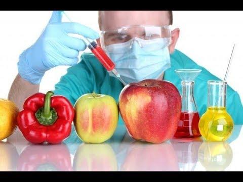 GDO'lu Ürünler Sağlığa Zararlı Mı?