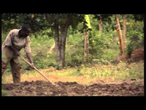 SNV film Mozambique