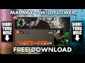 MALAKY / WILDFLOWER (free mp3 download)