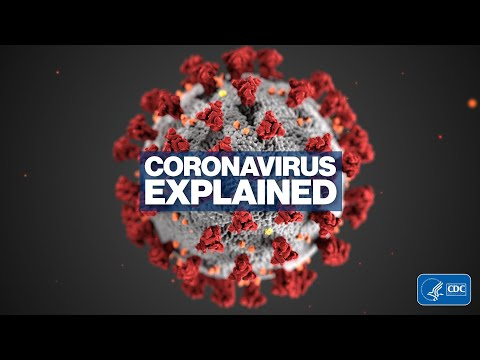 Novel Coronavirus explained l ABC News