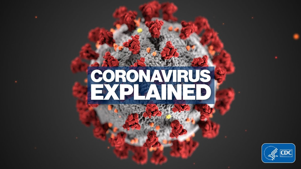 Novel Coronavirus explained l ABC News