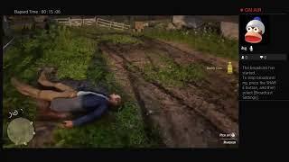 Red Dead Redemption 2 Online And Offline