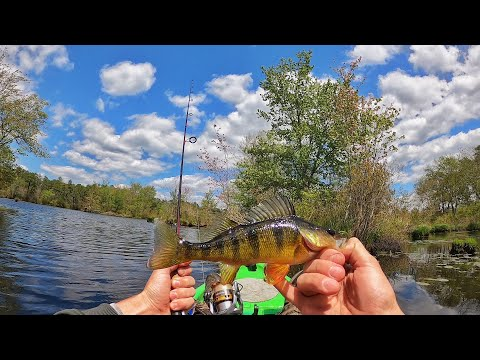 Kayak EXPLORING A REMOTE New Jersey BACKWATER! (Lake Lenape)