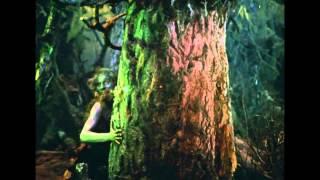 Фрагмент из фильма-сказки «Руслан и Людмила»