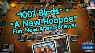 More Fun Arena Brews: https://www.youtube.com/watch?v=BXdehgNu8NQ&t...