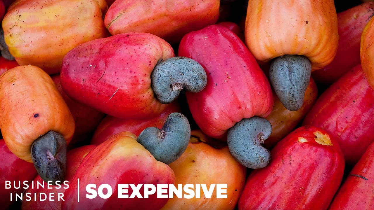Why Cashew Nuts Are So Expensive | So Expensive