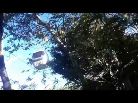 Sydney Cable Cars On Location Episode 2 Taronga Zoo Cable Cars