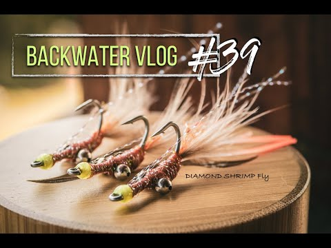 The 3 MINUTE Bonefish Shrimp Fly Everyone Should Know: Backwater VLOG #39