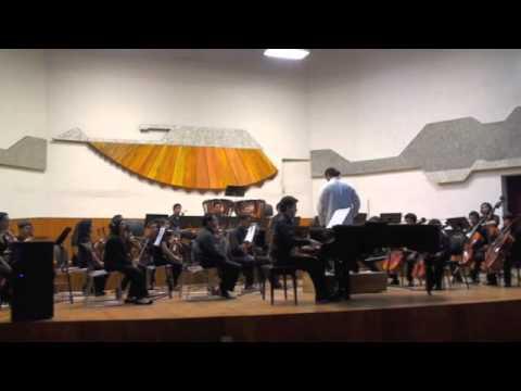 Cadenza, Mozart KV 414 Concerto. 1st Mov.
