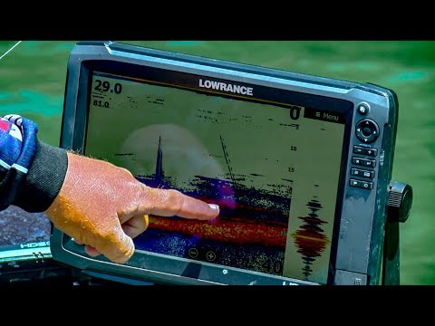 VIDEO GAME Sonar Bass Fishing - See Fish & Catch Limits
