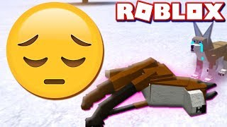 ROBLOX SAD FOX GAME (Fluffy Paws Let's Play Video)