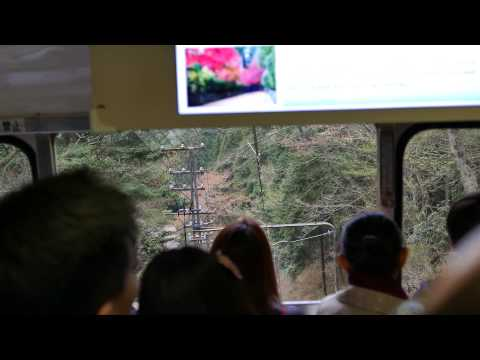 koyasan cable car【UNESCO World Heritage】Koyasan Shingon Buddhism Kongobuji explained
