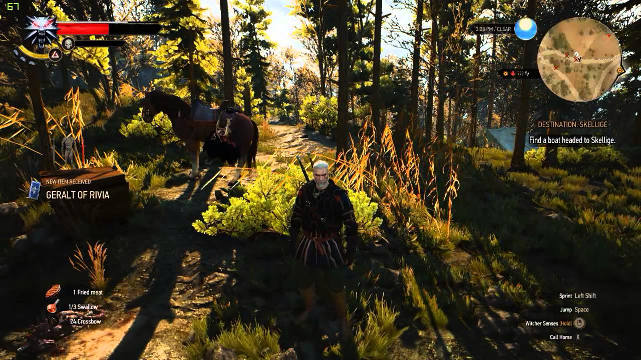 The witcher 3 how to unlock geralt and ciri 39 s gwent cards - Ciri gwent card witcher 3 ...