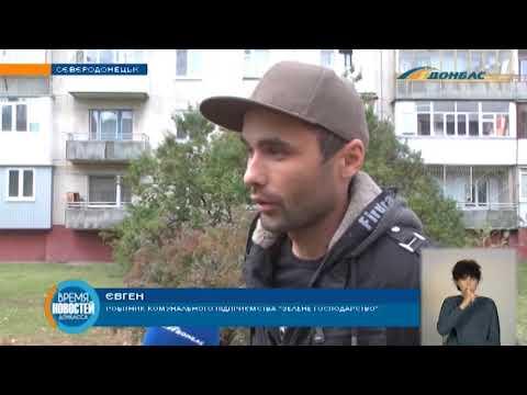 В Северодонецке коммунальщики кронируют дерева - горожане негодуют