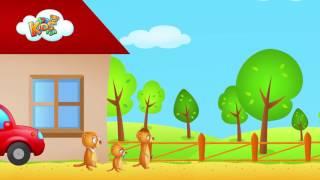 Farma - bajki dla dzieci - odgłosy Zwierząt
