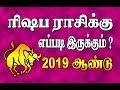 ரிஷபம் - 2019 ஆண்டு ராசிபலன்  | RISHABAM  2019 PREDICTION