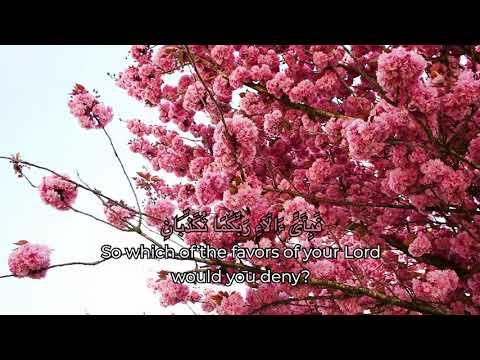 Beautiful Recitation Of Surah Rahman (with English Translation) | Sheikh Mahmood Fawzy