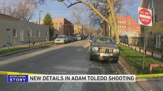 Bond Court Proffer Of Man Who Was With Adam Toledo, 13, At Time Of Fatal Shooting Provides New Detai