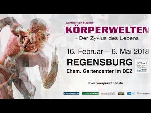 KÖRPERWELTEN ab 16.2.18 in Regensburg